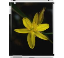 Rush Lily In Flower iPad Case/Skin