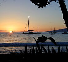 Lahaina Sunset by Cathy Jones