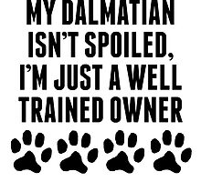 Well Trained Dalmatian Owner by kwg2200