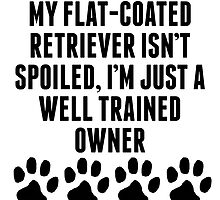 Well Trained Flat-Coated Retriever Owner by kwg2200