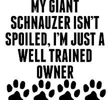 Well Trained Giant Schnauzer Owner by kwg2200