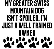 Well Trained Greater Swiss Mountain Dog Owner by kwg2200