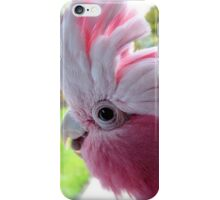 Yipeee! It's Going To Rain...Cockatoo - Rose Breasted/Galah - NZ iPhone Case/Skin