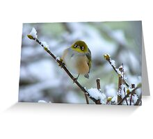 Annie Get Your Gun...There's No Business Like Snow Business! - Silver-Eye - NZ Greeting Card