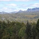 Cradle Mountain, from the King Billy Pine walking track mid February 2008 by gaylene