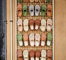 The Croc Shoe by Marnie Hibbert