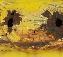 Bullet Holes on Cracked Yellow by Craig Watson
