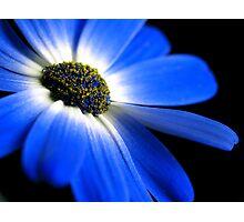 Blue! Photographic Print