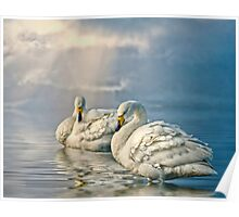 Whoopers Poster