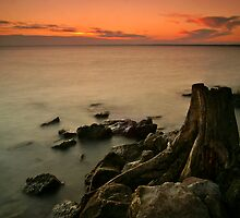 Indian summer VII by ZoltanBalogh