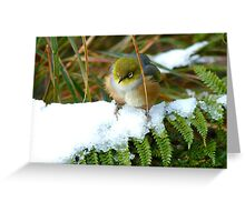 """Gosh!! How On Earth Will I """"FERNish This Place? - Silver-Eye - NZ Greeting Card"""