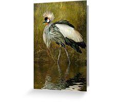 Great Crowned Crane Greeting Card