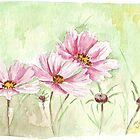 Cosmos in December by Maree  Clarkson