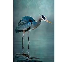 Blue Bayou Photographic Print