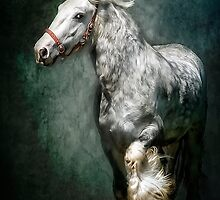 The Silver Gypsy by Tarrby
