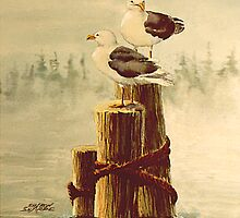 PAIR of GULLS on PILINGS by SHARON SHARPE by sharonsharpe