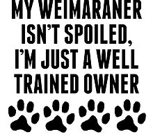 Well Trained Weimaraner Owner by kwg2200