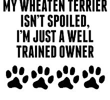 Well Trained Wheaten Terrier Owner by kwg2200