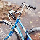 Blue Bike by Candypop