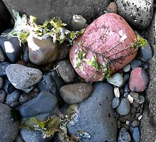 Coloured rocks, Sandringham Beach by Roz McQuillan
