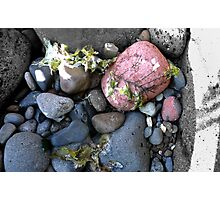 Coloured rocks, Sandringham Beach Photographic Print