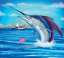 Whiplash - Sailfish by David Pearce