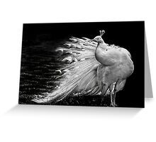 Peafowl  profile Greeting Card