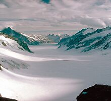 View From Jungfraujoch  by Larry149
