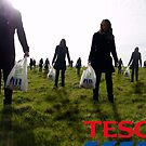 Tesco Sheep by Maxwell Ash