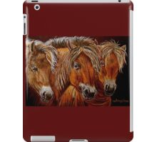"""Larry,Curlie and Moe"" iPad Case/Skin"