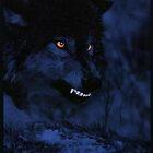 Wolf #3 by WarHammer