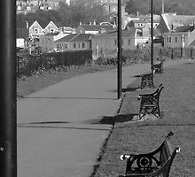 Lamposts and Benches by Iani