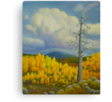 Autumn in Lapland Canvas Print