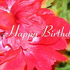 Smilie Happy Birthday Card by TLCGraphics