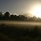 Misty morning in Healesville by Bee Dee
