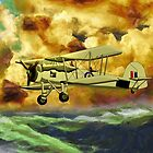 British WWII Swordfish Biplane - all products bar duvet by Dennis Melling