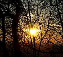 Hidden sunset by TriciaDanby