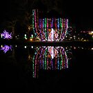 Holiday Lights & Reflection     ^ by ctheworld