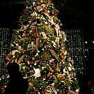 Lewis Ginter Botanical Garden - Richmond    ^ by ctheworld