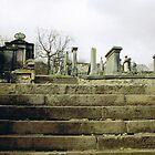 Grave Steps by Abbetha Smith