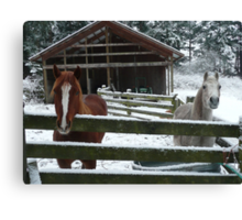 WE NEED TO GO SOUTH FOR THE WINTER Canvas Print