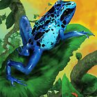 Blue Poison Dart Frog by Paramo
