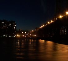 Manhattan Bridge by Emma and Dave Atkinson