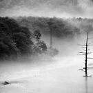 Taishoike pond after the typhoon, Japan by hoshisato