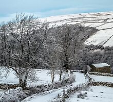 Walking In A Winter Wonderland by Sandra Cockayne