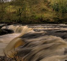 Aysgarth Falls by Andy Harris