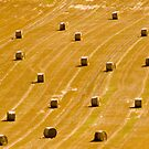 Straw bales by kevomanno