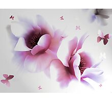 Day dreams Photographic Print