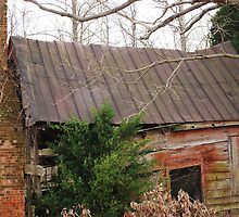 Wolftrap Slave Quarters by madman4