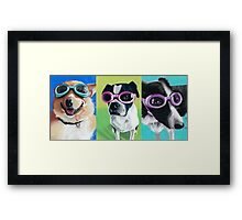 Dogs in Goggles Framed Print